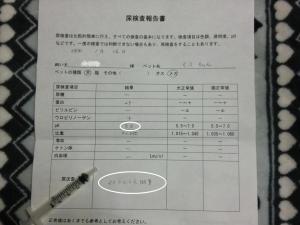 018繝シ菫ョ豁」_convert_20120119220658