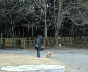 026繝シ繧ウ繝斐・_convert_20120126091948