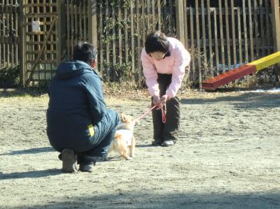 013繝シ繧ウ繝斐・_convert_20120130213322