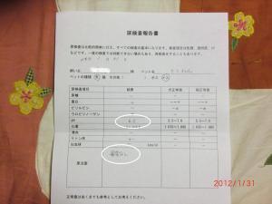 006繝シ菫ョ豁」_convert_20120201215502