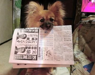041繝シ繧ウ繝斐・_convert_20120302223405