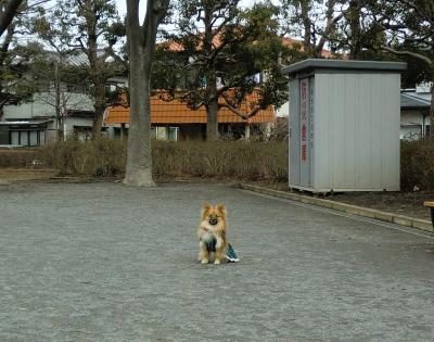 001繝シ繧ウ繝斐・_convert_20120304090811