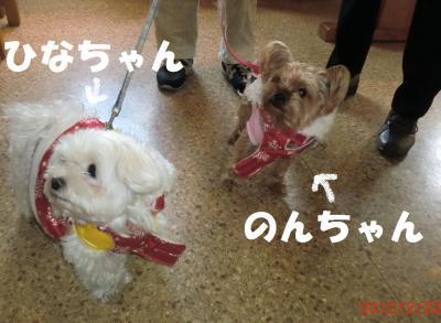 015繝シ繧ウ繝斐・繧ウ繝。繝ウ繝・convert_20120306141719