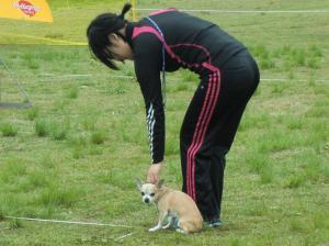 081繝シ繧ウ繝斐・_convert_20120426085346