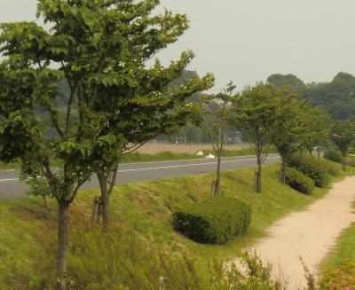 028繝シ繧ウ繝斐・_convert_20120519223047
