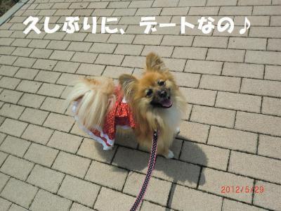033・阪さ繝。繝ウ繝・convert_20120530221004