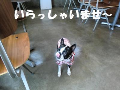 012・阪さ繝。繝ウ繝・convert_20120711220505