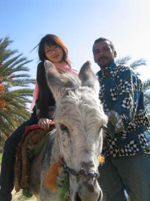 egypt+2007+421_convert_20101116100308.jpg