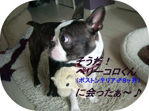 9th-②。_convert_20110620040054