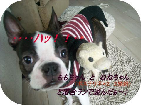 9th-④」_convert_20110620040333
