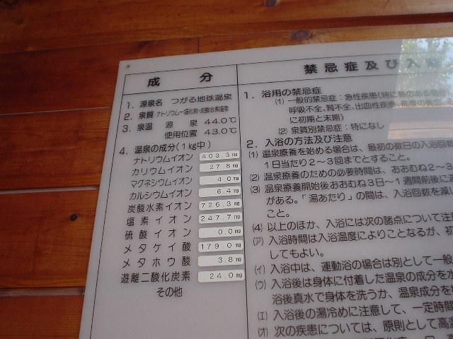 藤山邸分析表