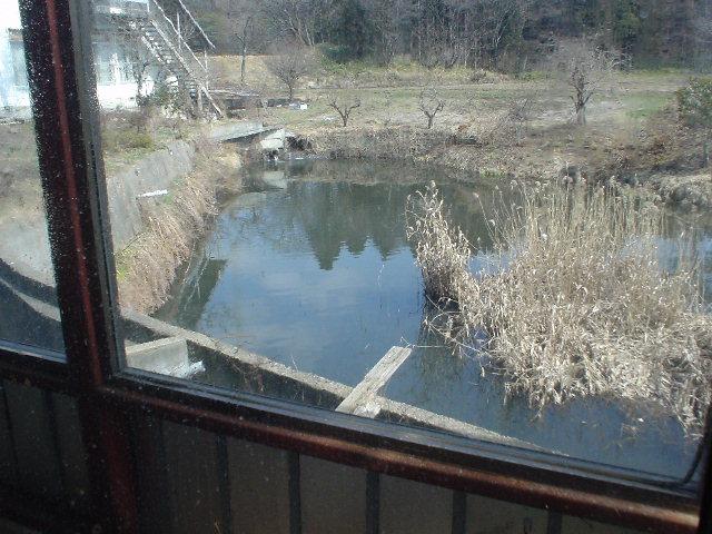 広い窓から望む景色
