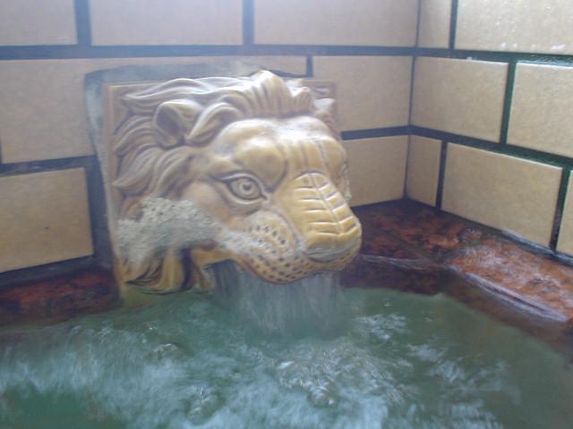 源泉ライオン湯口