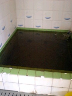 水風呂(温湯浴槽)