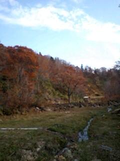 新館露天から望む紅葉