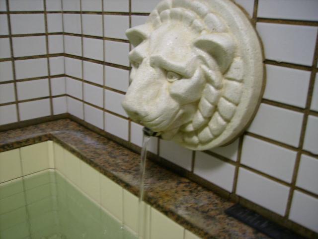 素敵なライオン湯口♪