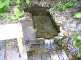 谷地の湧き水