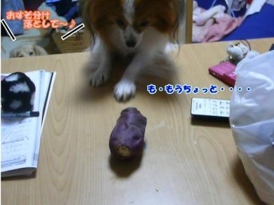 焼き芋食べた~~~い