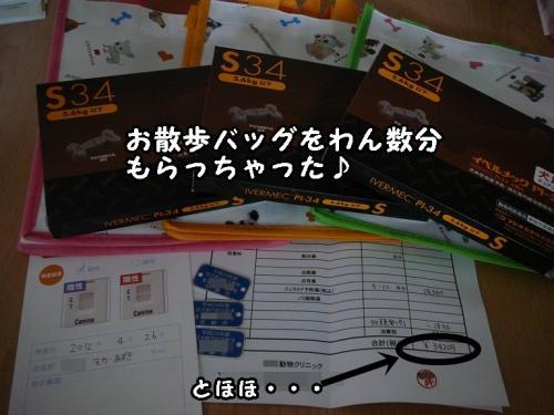 P1050073.jpg
