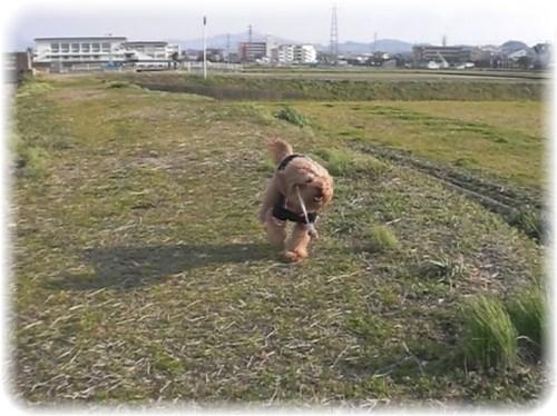 _yasumi5.jpg