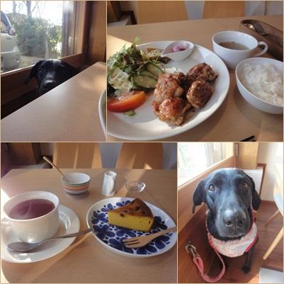 cafefika2014sep2