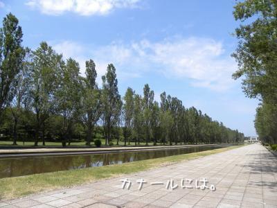 DSCN9754_convert_20120618211952.jpg