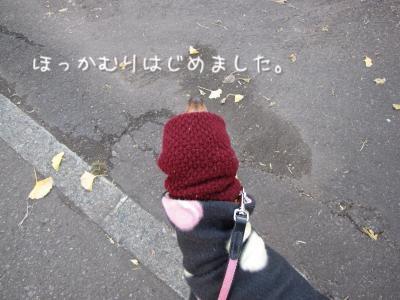 IMG_6087_convert_20111110174242.jpg