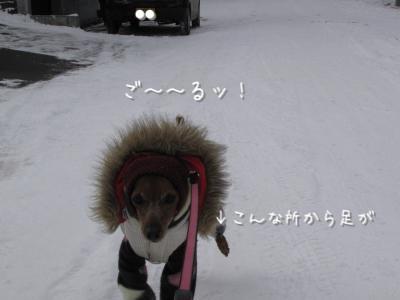 IMG_6449_convert_20120117210403.jpg