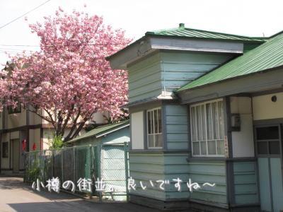 IMG_7313_convert_20120522191323.jpg