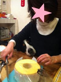 繧ッ繝ウ繧ッ繝ウ_convert_20120227001006