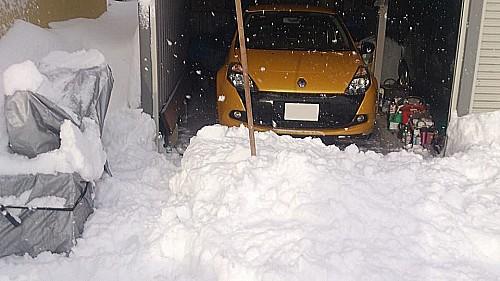 snowf03.jpg