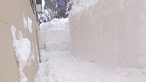 snowf06.jpg
