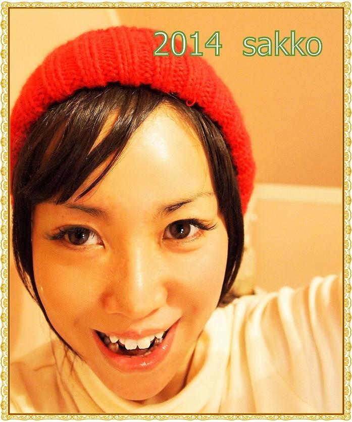018_pp サリーちゃん 444