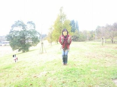 CIMG9620_20121105090314.jpg