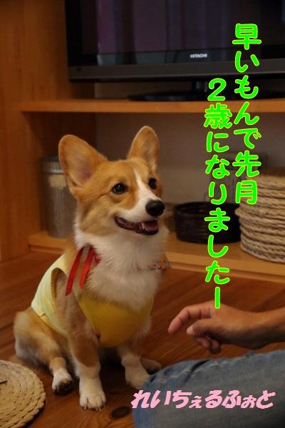 DPP_6210.jpg
