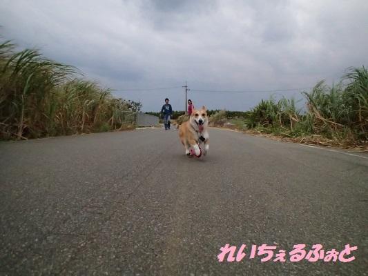 DPP_6320.jpg