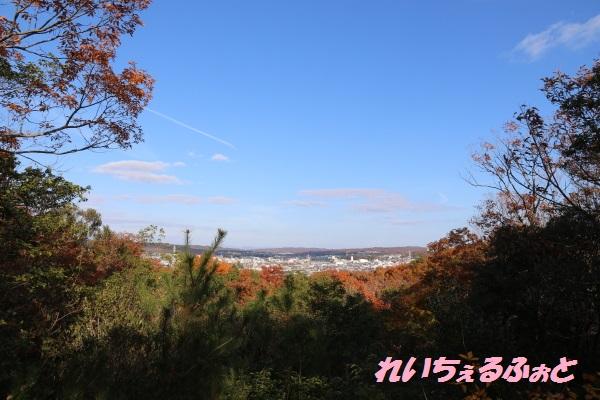 DPP_6505.jpg