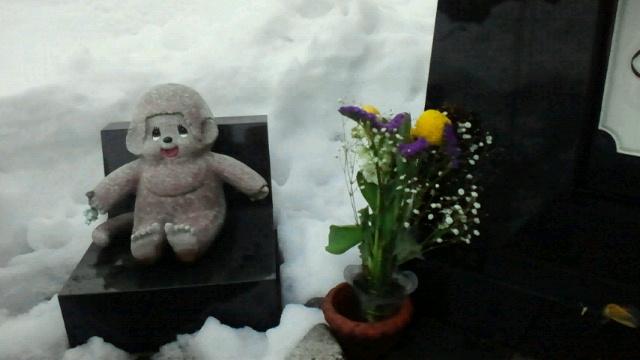 大雪のお墓参り2012022117410000