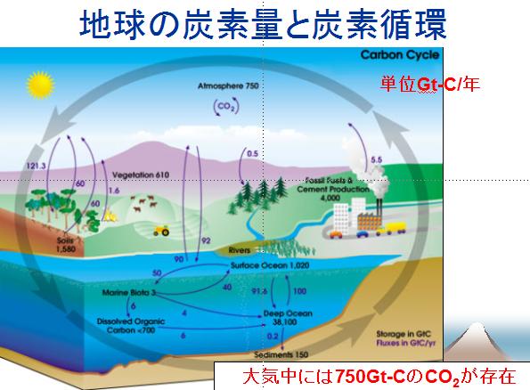 地球の炭素量と炭素循環図