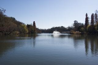 井の頭公園へ