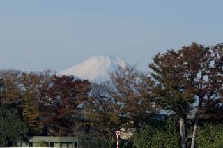 富士がこんなにも綺麗に見えるのは珍しい