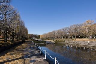 昭和記念公園で初撮り
