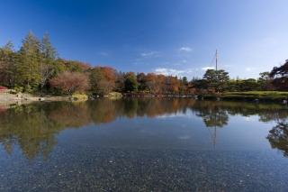 見よ、これが日本庭園と青空だ
