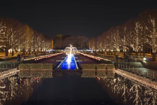 夜の昭和記念公園