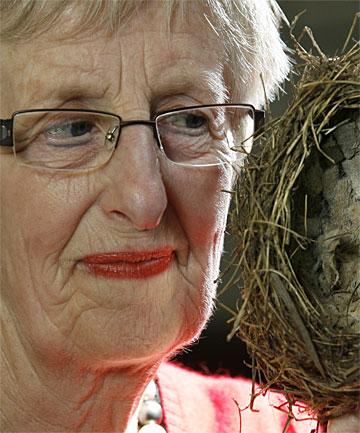 Judy Hutton