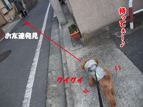 003_20120219110508.jpg