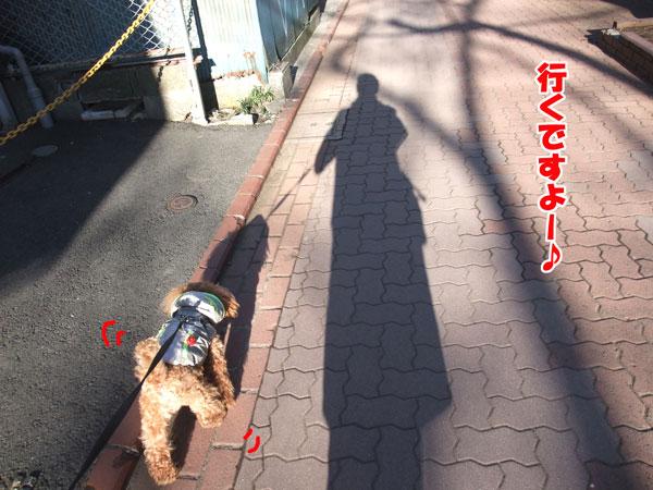 005a_20120212115407.jpg