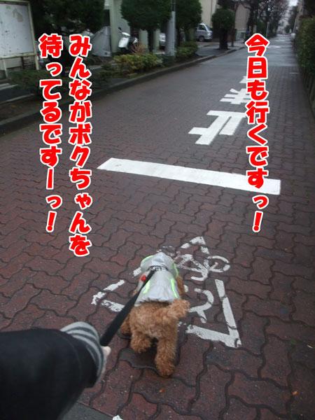008_20120122152818.jpg
