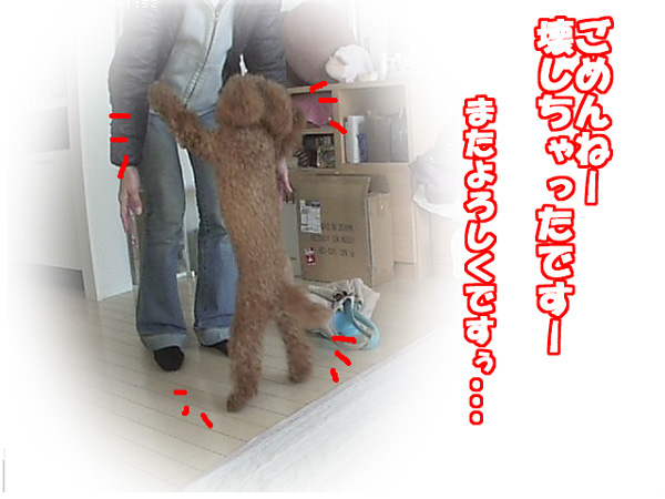 SnapshotJPEG2_20120113175630.jpg