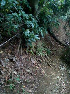 ロープ箇所